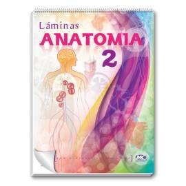Rotafolio Anatomia 2 50x70 Cm.